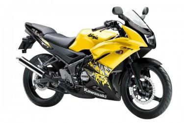 Kawasaki Ninja 150 RR New