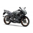 Kawasaki Ninja 150 RR New 1