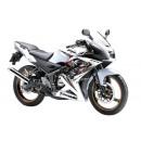 Kawasaki Ninja 150 RR New 2