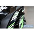 Kawasaki Ninja 250 FI 11