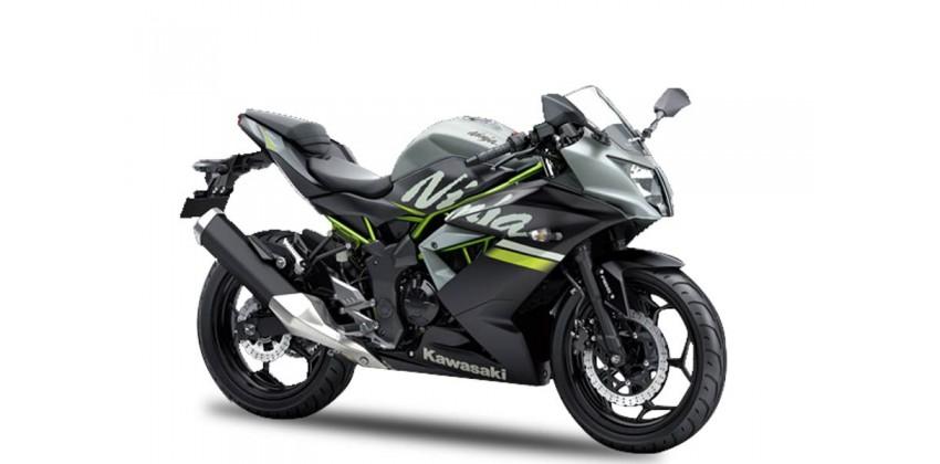 Kawasaki Ninja 250 SL 0