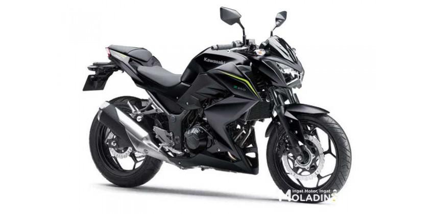 Kawasaki Z 250 9165 70486 large