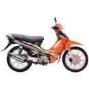 Suzuki Shogun 110 New 2