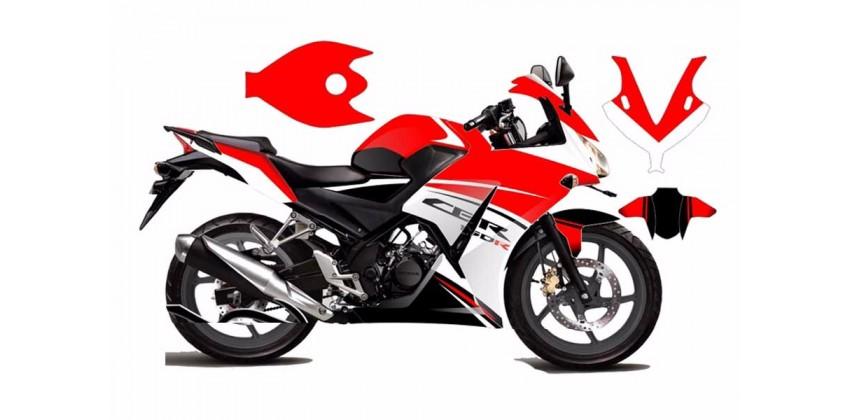 Decal & Stripping Custom Decal Lokal Ducati Line 0