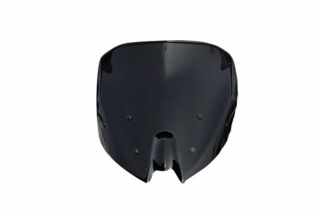 Windshield & Visor Windshield